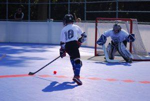 image of: youth ball hockey